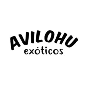 Avilohu_LOGO