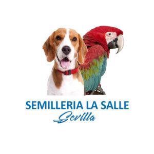 SemilleriaLasalle_LOGO