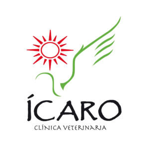 CV_Icaro_LOGO