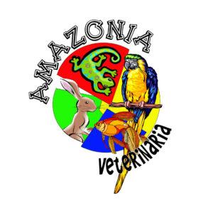 CVAmazonia